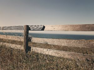 fence-238475_1920 copy